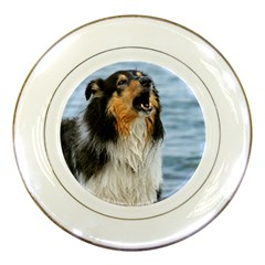 Black Tri Border Collie Wet Porcelain Plates