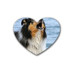 Black Tri Border Collie Wet Heart Coaster (4 pack)