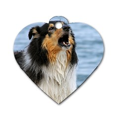 Black Tri Border Collie Wet Dog Tag Heart (Two Sides)