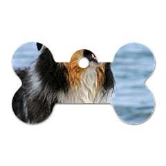 Black Tri Border Collie Wet Dog Tag Bone (One Side)