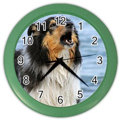 Black Tri Border Collie Wet Color Wall Clocks