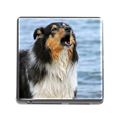 Black Tri Border Collie Wet Memory Card Reader (Square)