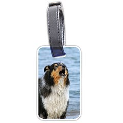 Black Tri Border Collie Wet Luggage Tags (One Side)
