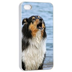 Black Tri Border Collie Wet Apple iPhone 4/4s Seamless Case (White)