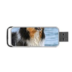 Black Tri Border Collie Wet Portable USB Flash (One Side)