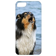 Black Tri Border Collie Wet Apple iPhone 5 Classic Hardshell Case