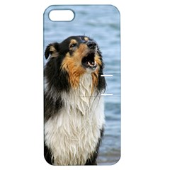 Black Tri Border Collie Wet Apple iPhone 5 Hardshell Case with Stand