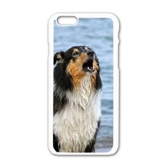 Black Tri Border Collie Wet Apple iPhone 6/6S White Enamel Case