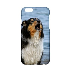 Black Tri Border Collie Wet Apple iPhone 6/6S Hardshell Case