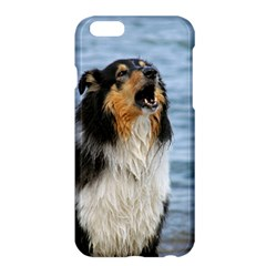 Black Tri Border Collie Wet Apple iPhone 6 Plus/6S Plus Hardshell Case