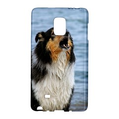 Black Tri Border Collie Wet Galaxy Note Edge