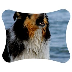 Black Tri Border Collie Wet Jigsaw Puzzle Photo Stand (Bow)