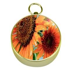 Sunflower Art  Artistic Effect Background Gold Compasses