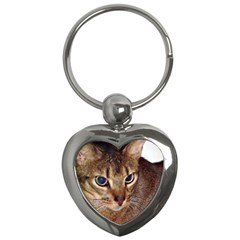 Abyssinian 2 Key Chains (Heart)