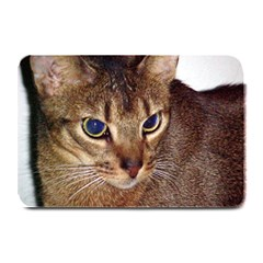 Abyssinian 2 Plate Mats