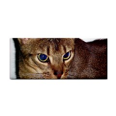 Abyssinian 2 Cosmetic Storage Cases