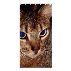 Abyssinian 2 Shower Curtain 36  X 72  (stall)