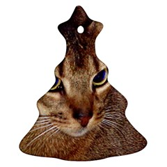 Abyssinian 2 Ornament (Christmas Tree)