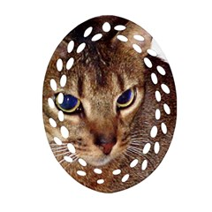 Abyssinian 2 Oval Filigree Ornament (two Sides)