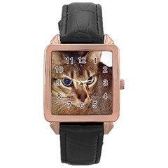 Abyssinian 2 Rose Gold Leather Watch