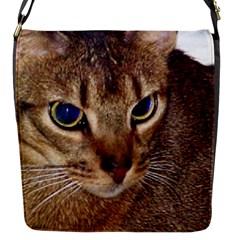 Abyssinian 2 Flap Messenger Bag (S)