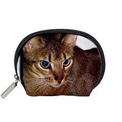 Abyssinian 2 Accessory Pouches (Small)