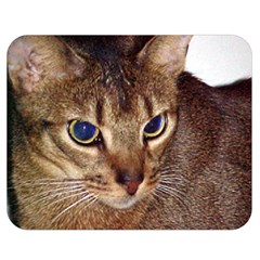 Abyssinian 2 Double Sided Flano Blanket (Medium)