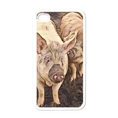 Happy Pigs Apple iPhone 4 Case (White)