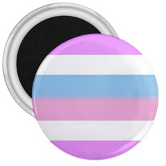 Bigender 3  Magnets