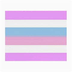Bigender Small Glasses Cloth