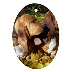 2 Bassets Ornament (Oval)