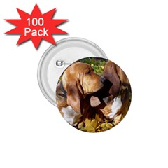 2 Bassets 1.75  Buttons (100 pack)