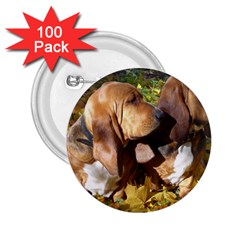 2 Bassets 2.25  Buttons (100 pack)