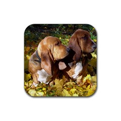 2 Bassets Rubber Square Coaster (4 pack)