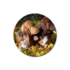 2 Bassets Rubber Round Coaster (4 pack)