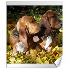 2 Bassets Canvas 8  x 10