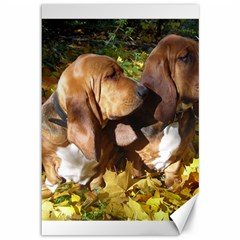 2 Bassets Canvas 12  x 18
