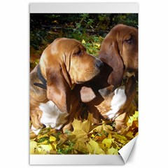 2 Bassets Canvas 24  x 36