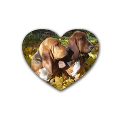 2 Bassets Heart Coaster (4 pack)