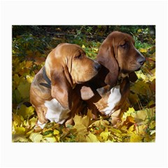 2 Bassets Small Glasses Cloth (2-Side)