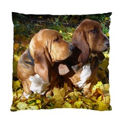 2 Bassets Standard Cushion Case (Two Sides)