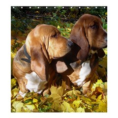 2 Bassets Shower Curtain 66  X 72  (large)