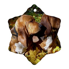2 Bassets Snowflake Ornament (Two Sides)