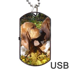 2 Bassets Dog Tag USB Flash (One Side)