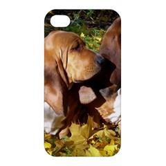 2 Bassets Apple iPhone 4/4S Hardshell Case
