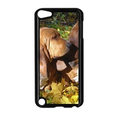 2 Bassets Apple iPod Touch 5 Case (Black)