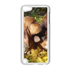 2 Bassets Apple iPod Touch 5 Case (White)