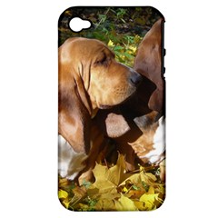 2 Bassets Apple iPhone 4/4S Hardshell Case (PC+Silicone)