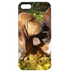2 Bassets Apple iPhone 5 Hardshell Case with Stand