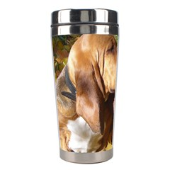 2 Bassets Stainless Steel Travel Tumblers